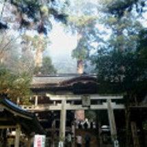 年末年始 京都旅③