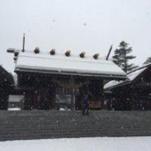 円山散歩で運気チャー…