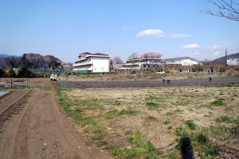 小沢城⑤お寺の裏