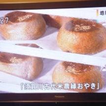 須賀川 古代米 おや…