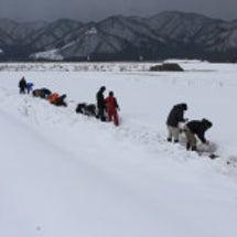 高根雪中貯蔵 PAR…