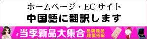 中国語 翻訳 ホームページ ECサイト 安い 札幌