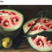 現代の野菜や果物は原…