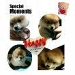 Happy ♥ Va…