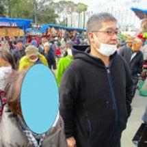 今日も椿祭りへ行きま…