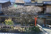 祇園白川9