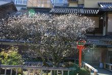 祇園白川7