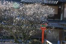 祇園白川8