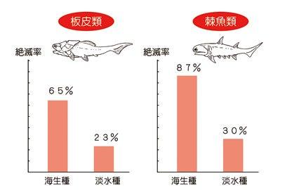 板皮類と棘魚類の絶滅率