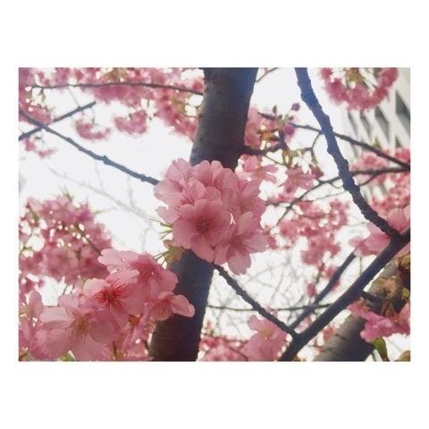 【つばきファクトリー】小片リサちゃん応援スレ Part11【りさまる。】 ©2ch.netYouTube動画>8本 ->画像>238枚