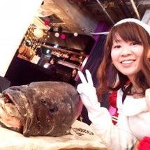 変わったお魚を食べる…