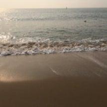 海雲台ビーチはカモメ…