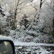 窓を開けたら雪景色❗