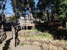 上野毛自然公園2