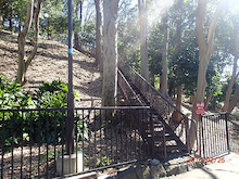 上野毛自然公園1