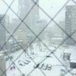 雪とカミナリ