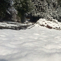 三月 初っぱな雪〜