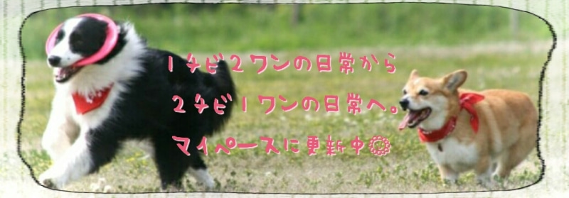 2016-03-08_23.59.03.jpg