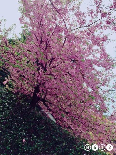 ハロプロ研修生総合スレ Part.719 ©2ch.netYouTube動画>10本 ->画像>343枚
