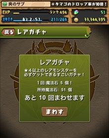 木フェス3