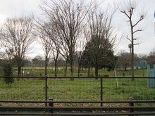 はけの道から見た道路計画予定地の風景