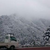 TOKYO 雪景色
