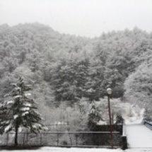 またまた雪景色のお宿…