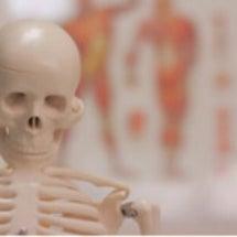 骨格スタイル分析って…