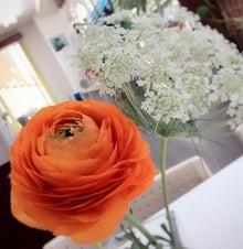 事務所の花2