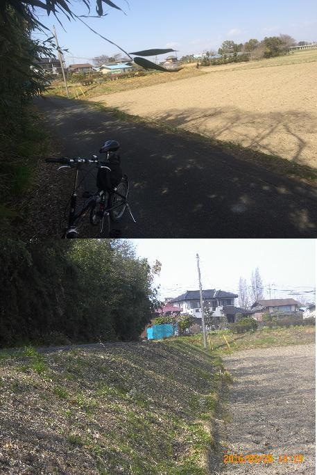 鴻巣1603200493