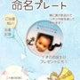 赤ちゃんの命名プレー…