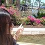 ハワイ島きてるよー