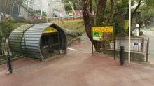 動物園の写真