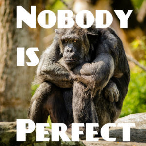 nobody is perfect 英語