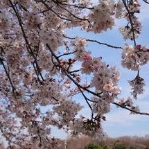 ☆小春日和☆