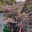 本日の渋谷★