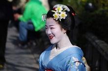 祇園白川の桜と芸舞妓撮影会012