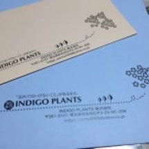 インディゴの封筒が出…