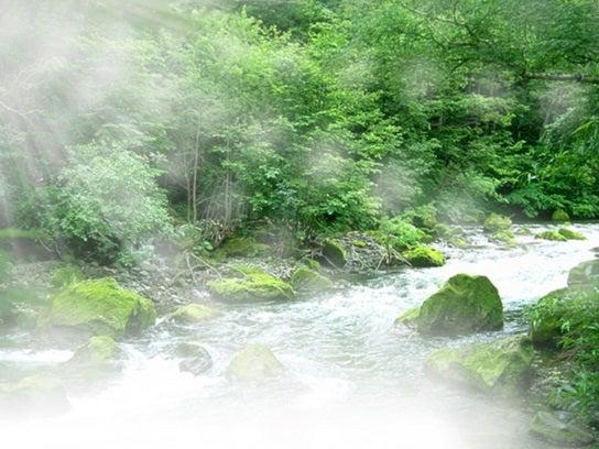 小川に淡い光