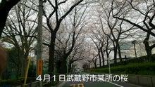 武蔵野市某所
