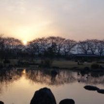 富山の桜、満開宣言出…