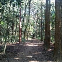 鹿島の森域