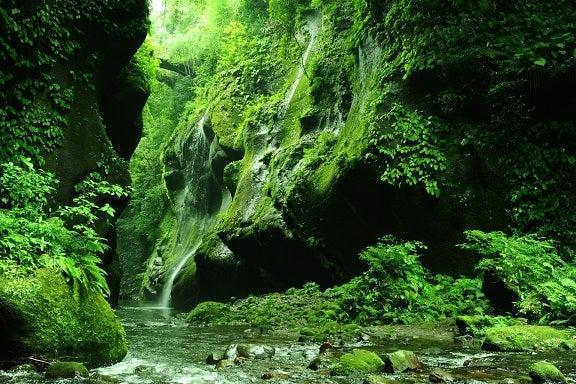 滝と川 散在意識