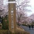☆桜サク☆