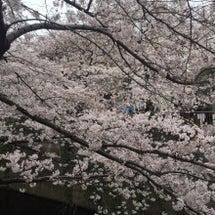 春のジェルネイル❤︎…