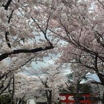 素晴らしい 日本の時…