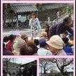 桜ニコニコ会の花見ま…