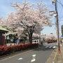 高松、岡山行ってきま…