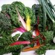 おばあちゃんちの野菜
