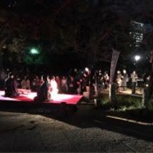 赤坂の夜桜